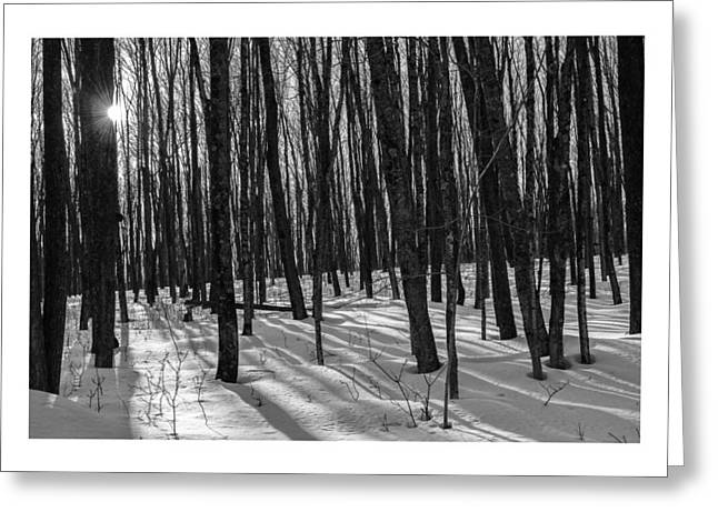 A Long Winter's Day Greeting Card