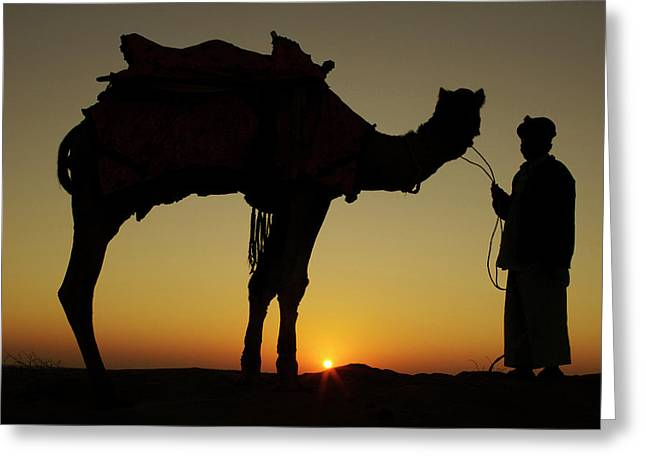 A Man And His Camel Silhouetted Greeting Card