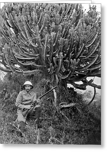 A Man In Africa Holding A Rifle N Front Of A Large Rubber Tree. Greeting Card