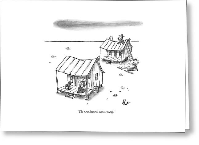 A Man On Top Of A Shack With A Ladder Greeting Card by Frank Cotham