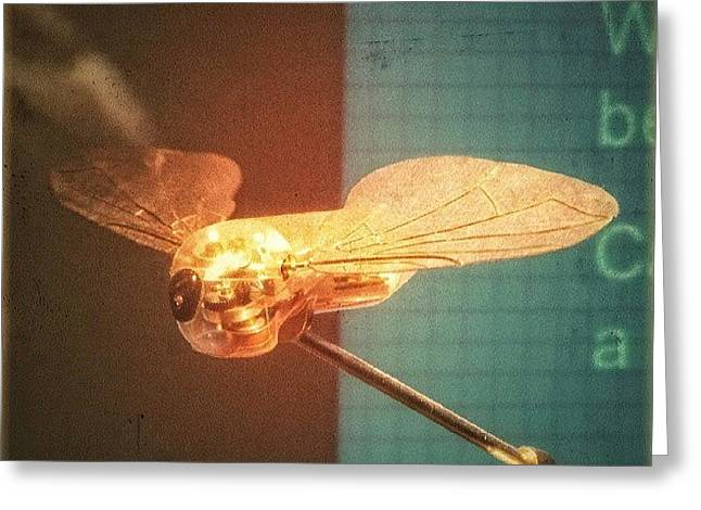 A #mechanical #fly From A #birmingham Greeting Card