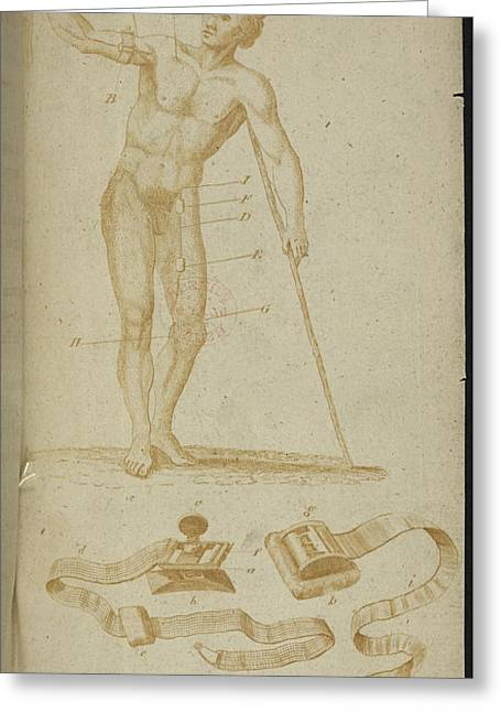 A Medical Diagram Of A Naked Man Greeting Card by British Library