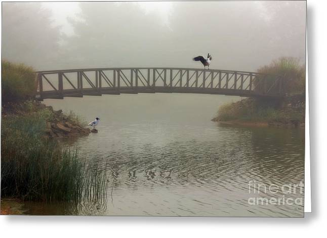 A Meeting In The Fog Greeting Card by Tom York Images