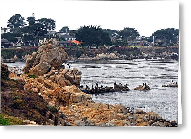 A Misty Day At Pacific Grove Greeting Card