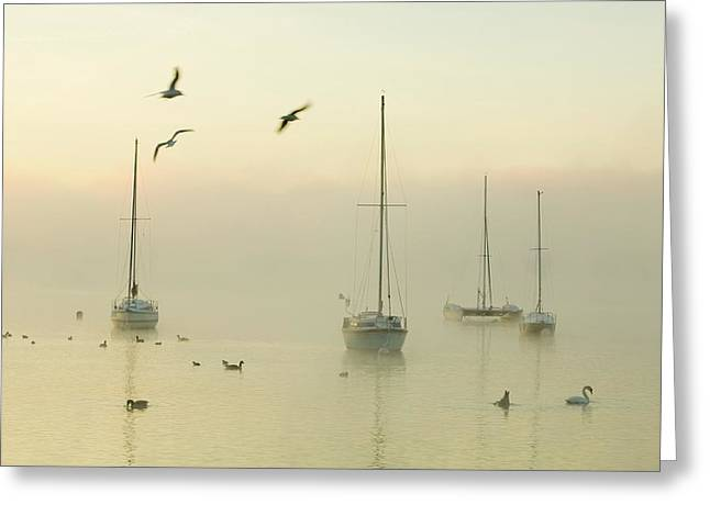 A Misty Morning Over Lake Windermere Greeting Card