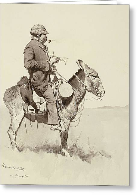 A Modern Sancho Panza Greeting Card by Frederic Remington