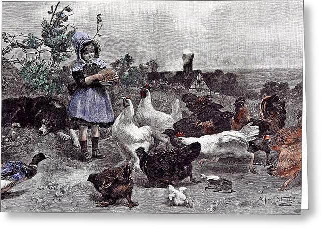 A Morning Call Chicken A.w Greeting Card by English School