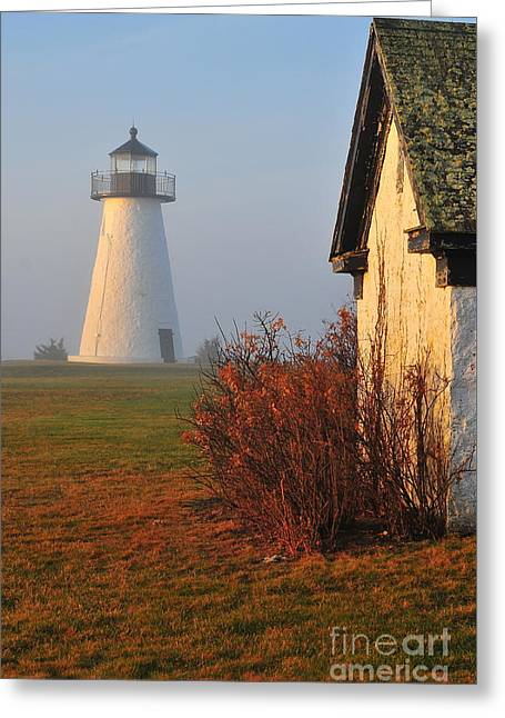 Morning Fog Greeting Card by Catherine Reusch Daley