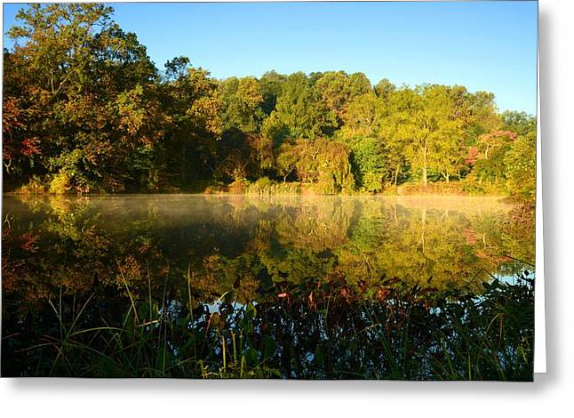 A Morning To Reflect Greeting Card by Angie Tirado