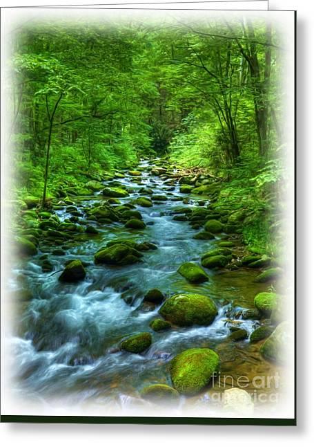 A Mountain Stream Greeting Card by Mel Steinhauer