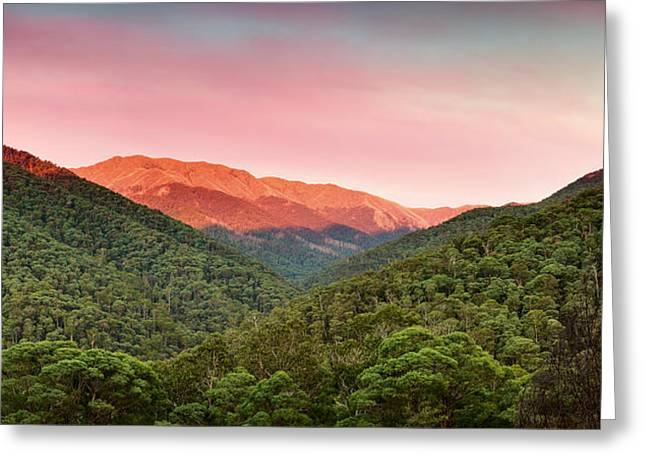 A Natural Highlight Greeting Card by Mark Lucey