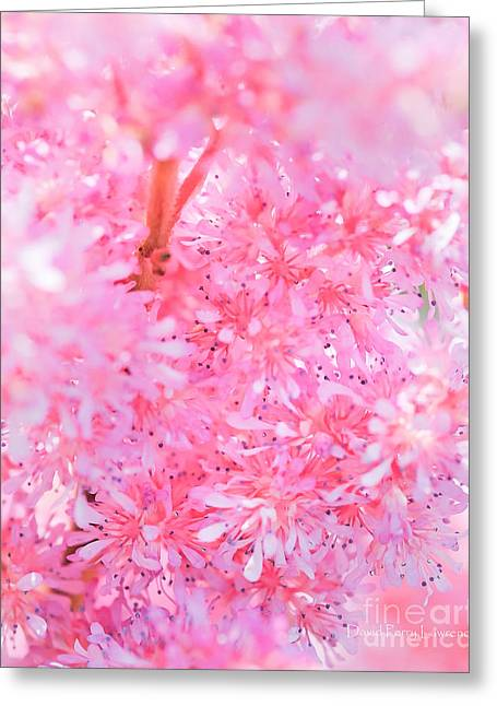 Greeting Card featuring the photograph A Natural Pink Bouquet by David Perry Lawrence
