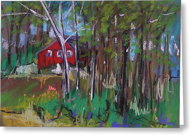 A New Coat Of Paint Greeting Card by John Williams