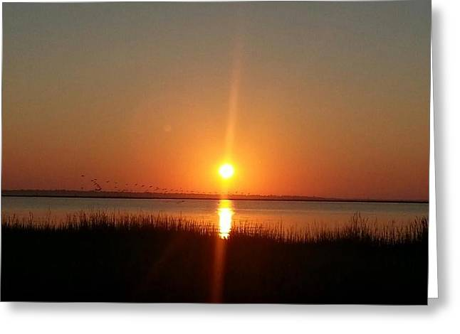 Greeting Card featuring the photograph A New Day Is Born by Joetta Beauford
