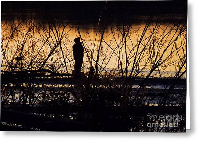 Greeting Card featuring the photograph A New Day by Robyn King