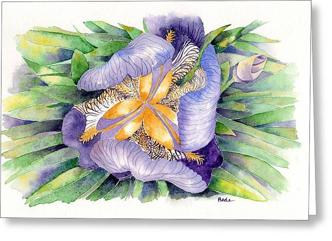 A New Perspective Greeting Card by Catherine Bede