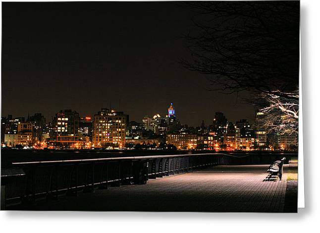A Night In The Park Greeting Card
