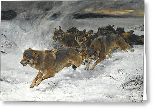 A Pack Of Wolves Greeting Card