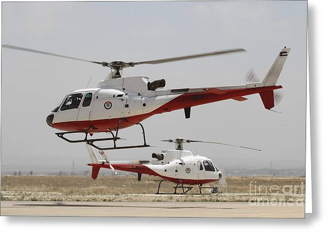 A Pair Of As350 Squirrel Helicopters Greeting Card by Ofer Zidon