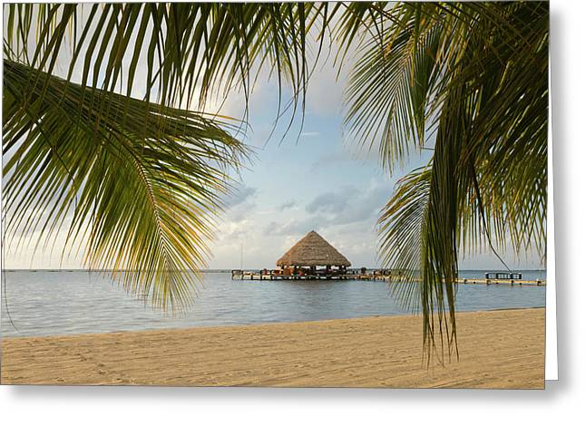 A Palapa And Sandy Beach, Placencia Greeting Card