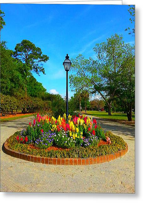 Greeting Card featuring the photograph A Park's View by Joetta Beauford