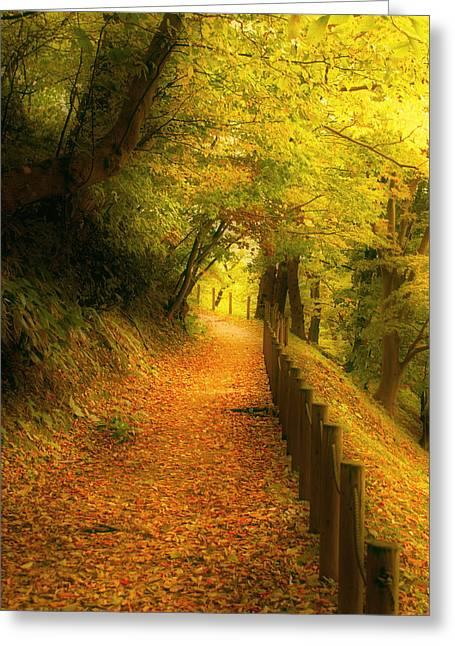 A Path Well Chosen Greeting Card