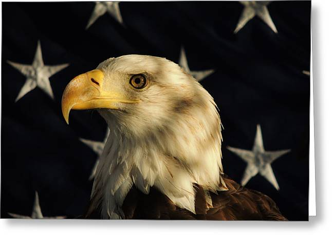 Greeting Card featuring the photograph A Patriot by Raymond Salani III