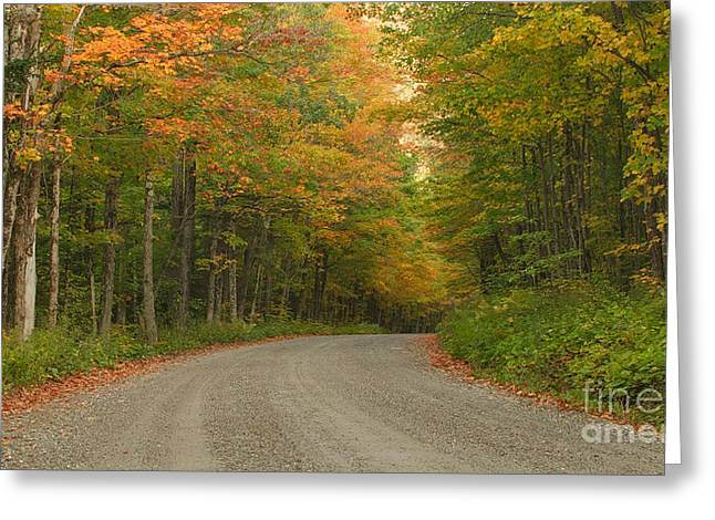 A Peaceful Road Greeting Card by Charles Kozierok