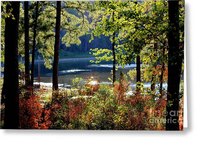 A Peek At Lake O The Pines Greeting Card by Kathy  White