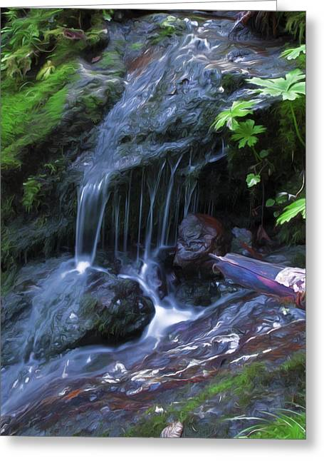 A Picture Of Fresh Spring Run Off. Greeting Card