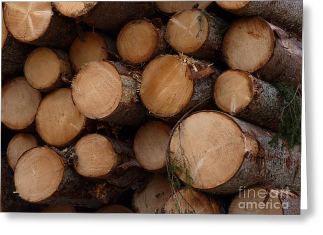 A Pile Of Logs  Greeting Card by Kerstin Ivarsson