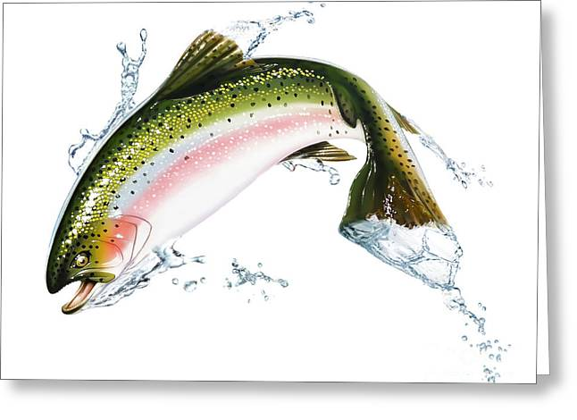 A Pink Salmon Jumping Out Of The Water Greeting Card