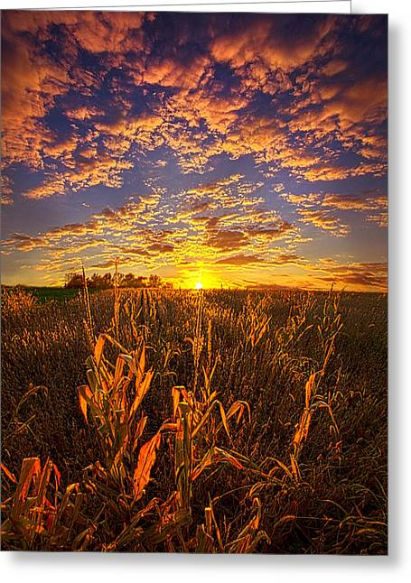 A Place You Call Home Greeting Card by Phil Koch