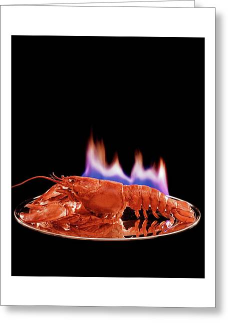 A Plate Of Lobster Flambe Greeting Card