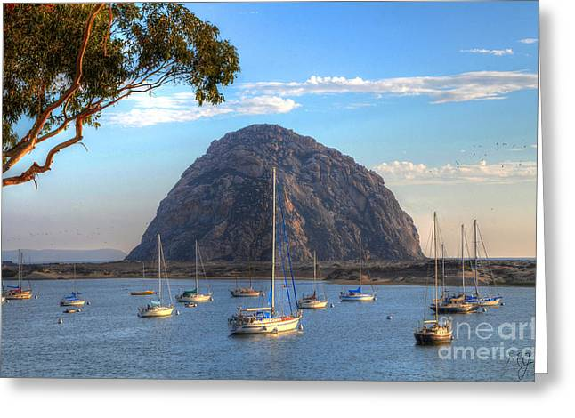 A Pleasant Day In Morro Bay Greeting Card