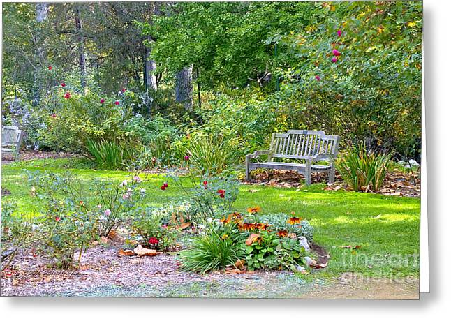 A Quiet Day In The Park Greeting Card