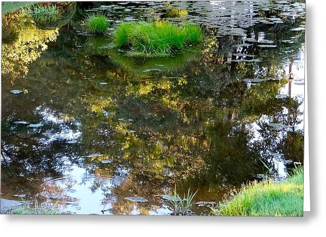 A Quiet Little Pond Greeting Card by Ira Shander