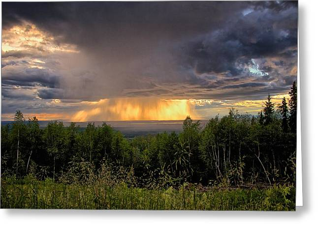 Greeting Card featuring the photograph A Rainy Night In Minto  by Michael Rogers