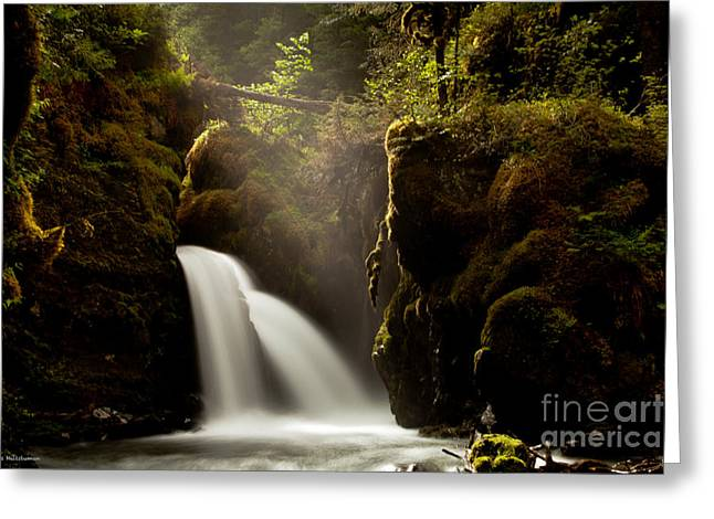 A Ray Of Light Greeting Card by Chris Heitstuman