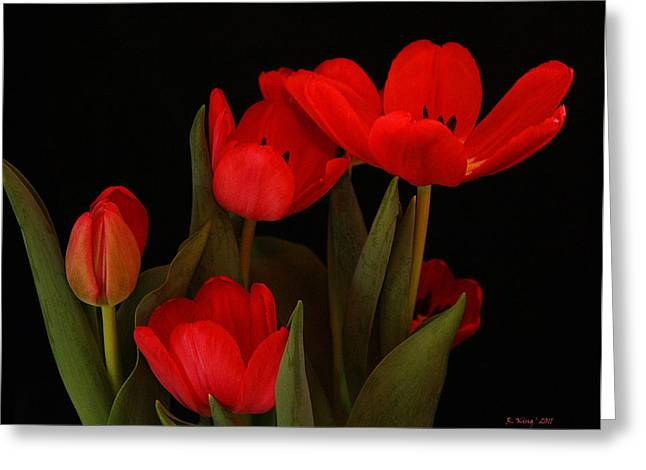 A Red Tulip Day Greeting Card by Roena King