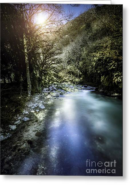A River In A Forest At Sunset, Ritsa Greeting Card