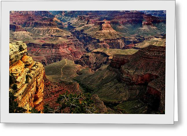 A River Runs Through It-the Grand Canyon Greeting Card
