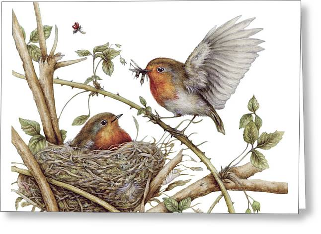 A Robins Family Greeting Card