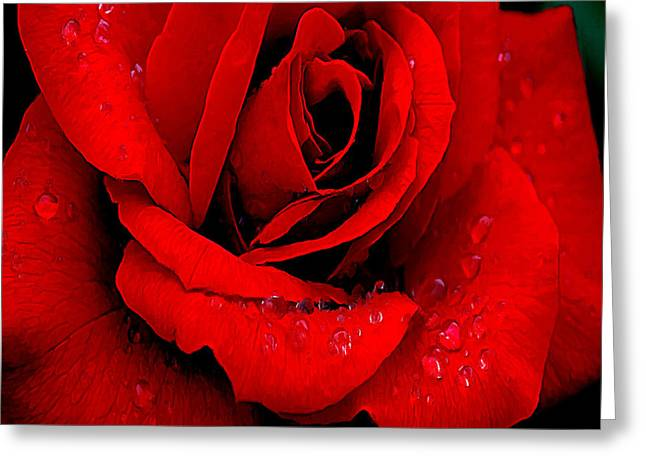 A Rose For A Sweetheart Greeting Card by Bob and Nadine Johnston