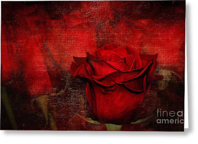 A Rose For You Greeting Card by Kaye Menner