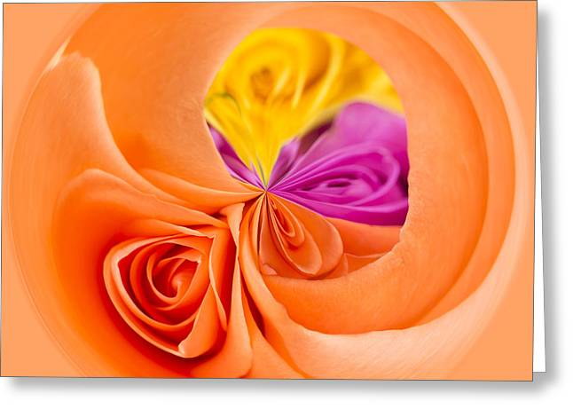 A Round Of Roses Greeting Card by Anne Gilbert