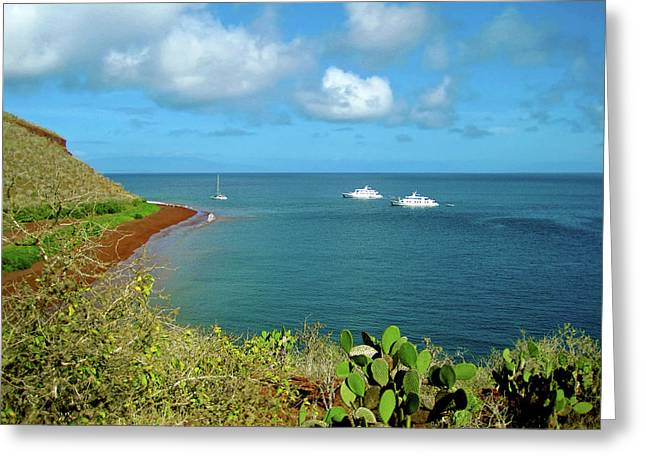 A Sailboat And Yachts With Tourists Greeting Card by Miva Stock