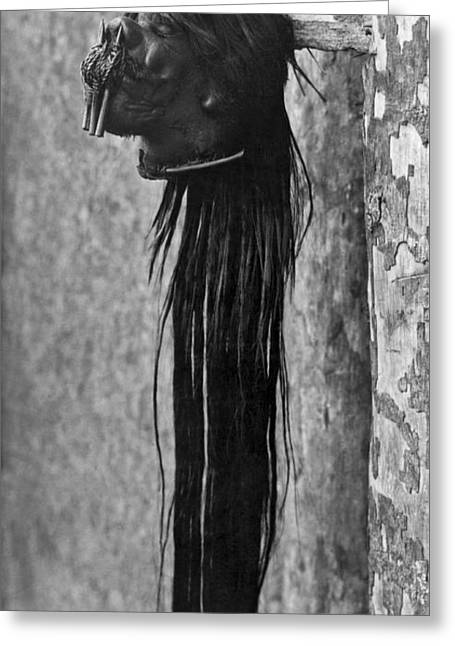 A Shrunken Head From Ecuador Greeting Card by Underwood Archives