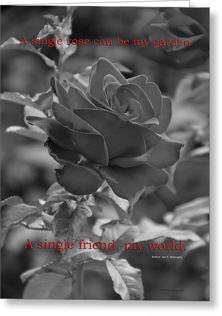 A Single Friend My World Bw Greeting Card by Thomas Woolworth
