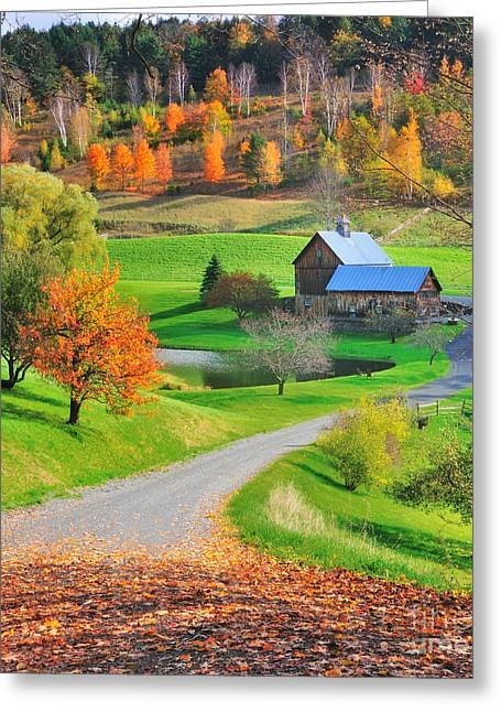 Sleepy Hollow Autumn - Pomfret Vermont Greeting Card by Thomas Schoeller